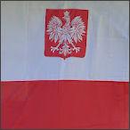 2012-06-16 Polska Czechy 0-1